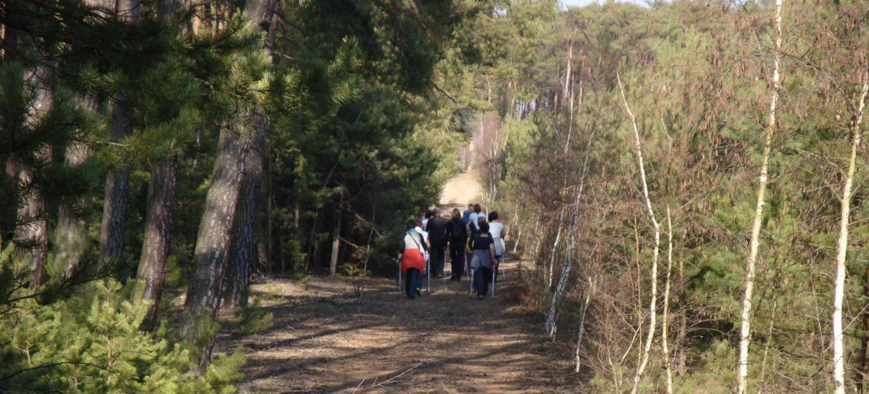 Wtorki z nordic walking