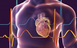 Ocena niektórych fizjologicznych efektów zastosowania Nordic Walking jako uzupełniającego elementu ćwiczeń fizycznych w drugim etapie rehabilitacji po zawale serca