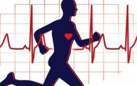 Efekty 3-tygodniowego treningu Nordic Walking na poziom aerobowej wydolności fizycznej i sylwetkę