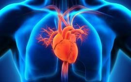 Trening Nordic Walking a autonomiczny układ nerwowy u osób z przewlekłą niewydolnością serca