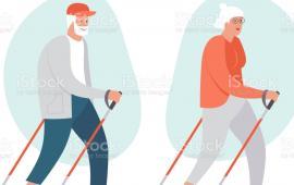 Efekty 8- tygodniowego treningu Nordic Walking na wybrane parametry somatyczne i zmiany w ruchu stawów u kobiet starszych