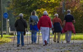 Nordic Walking w środowisku akademickim